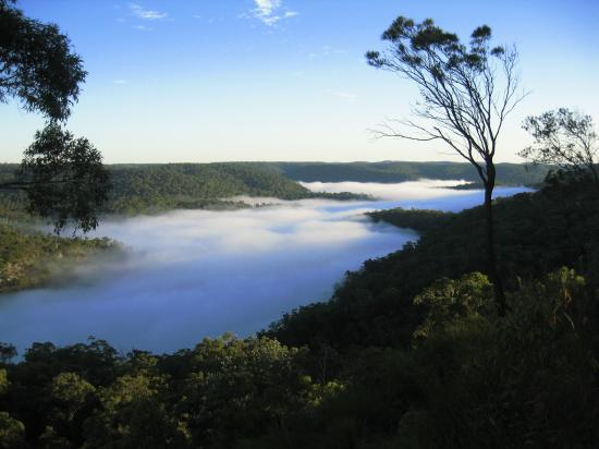 Berowra Lookout - Autumn Mist
